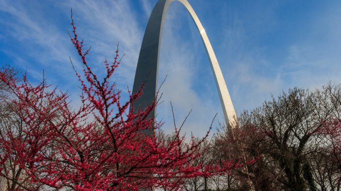 The Gateway Arch through red leafed trees