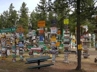 Signpost Forest at Lake Watson