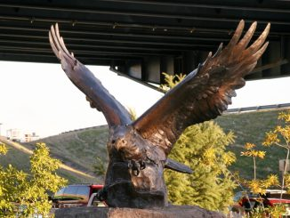 Eagle of the Rock
