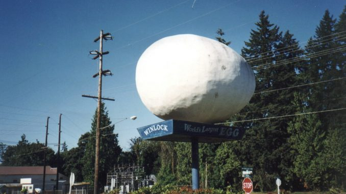 World's Largest EGG