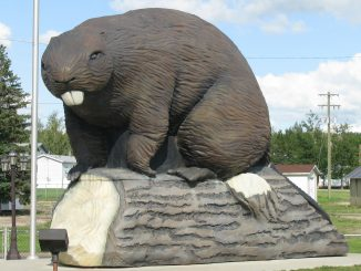 World's Largest Beaver